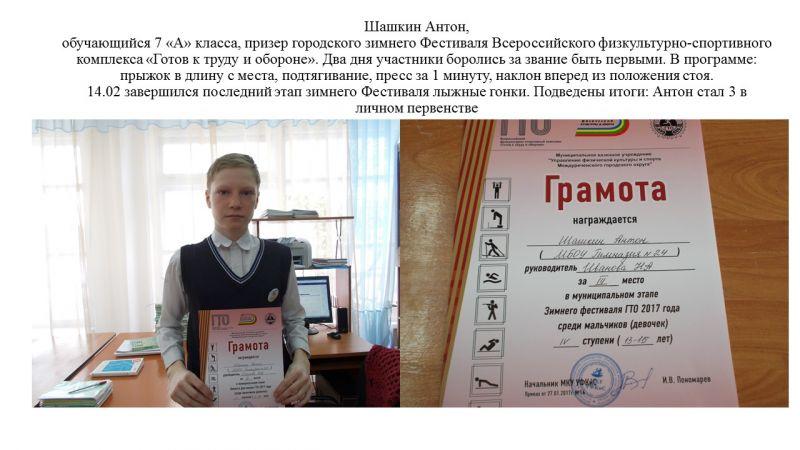 Шашкин Антон